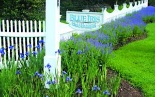Photo of Blue Iris Bed and Breakfast